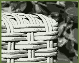 polyrattan gartenmöbel günstig